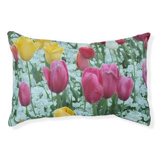 Glowing Tulip Garden Pet Bed