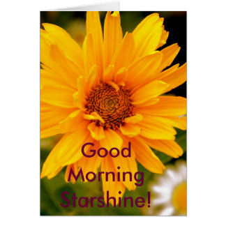 G'Morning Starshine Card
