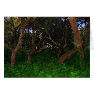 Gnarled Trees Card