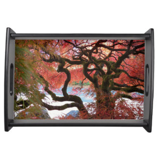 Gnarly Japanese Maple Floral Serving Tray