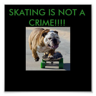gnarly puppy, SKATING IS NOT A CRIME!!!! Poster