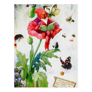 Gnome in a poppy flower postcard