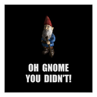 Gnome You Didnt Poster