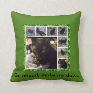 Go ahead make my day! throw pillow