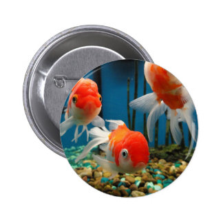 Go Fish 2 Inch Round Button