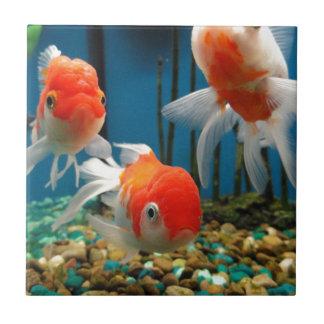Go Fish Ceramic Tiles