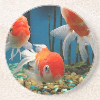 Go Fish Coaster