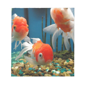 Go Fish Notepads
