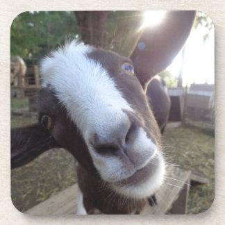 Goat Barnyard Farm Animal Coaster