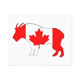 Goat Canada Canvas Print