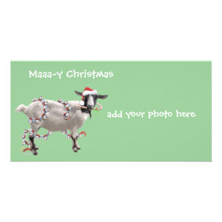 Goat Christmas Photo Card