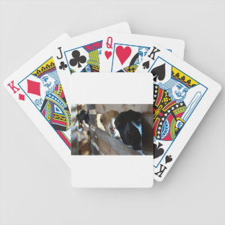 Goat Focus Bicycle Playing Cards