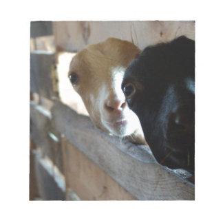 Goat Focus Notepad