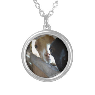 Goat Focus Silver Plated Necklace