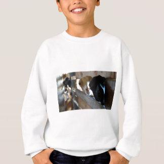 Goat Focus Sweatshirt