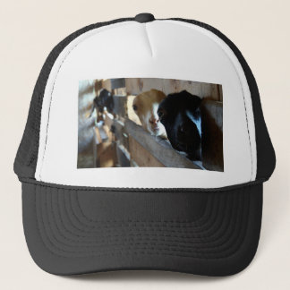 Goat Focus Trucker Hat