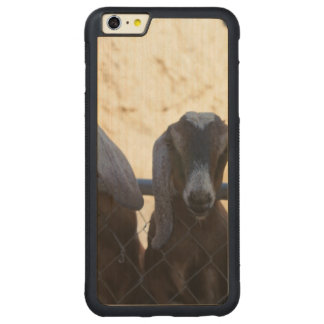 Goat Gathering Carved Maple iPhone 6 Plus Bumper Case