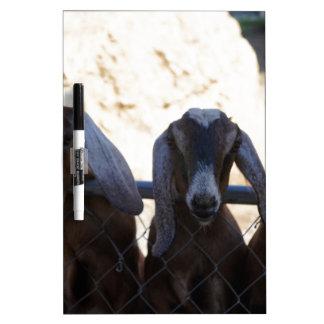 Goat Gathering Dry-Erase Board
