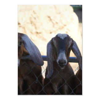 Goat Gathering Magnetic Invitations