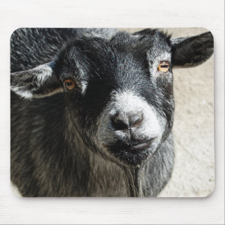Goat Mouse Pad