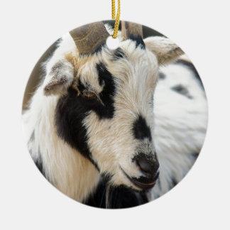Goat portrait ceramic ornament