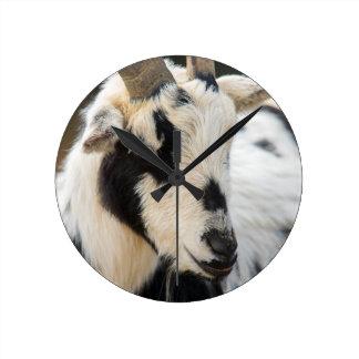 Goat portrait clock