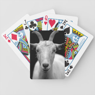 Goat portrait in black and white bicycle playing cards