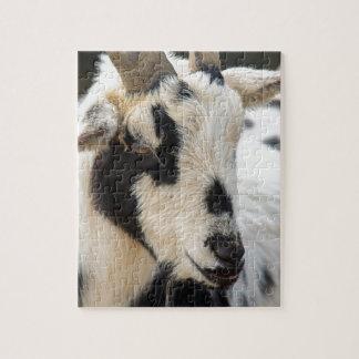 Goat portrait jigsaw puzzle