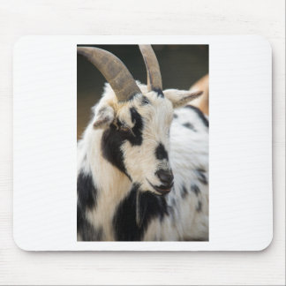 Goat portrait mouse pad