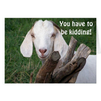 "GOAT SAYS-GOT TO BE KIDDING ""40th"" Card"