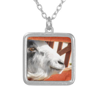 Goat Silver Plated Necklace
