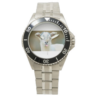 Goat watch