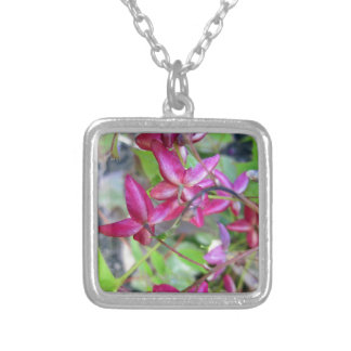 Goat Weed-.jpg Silver Plated Necklace