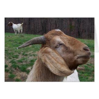Goats Card