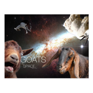 Goats.In.Space Postcard