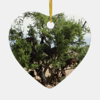 Goats in Trees - Argan Trees, Morocco Ceramic Ornament