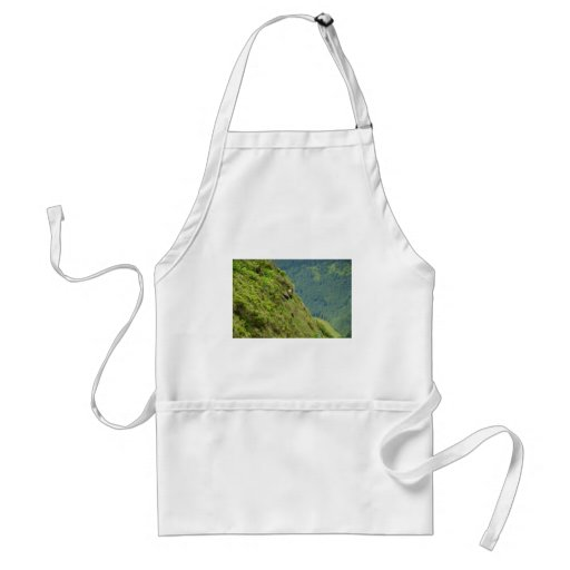 Goats on a very steep hillside aprons