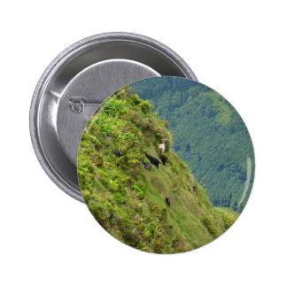 Goats on a very steep hillside pin