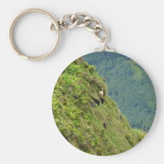 Goats on a very steep hillside key chain