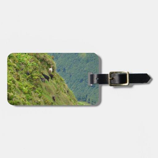 Goats on a very steep hillside bag tag