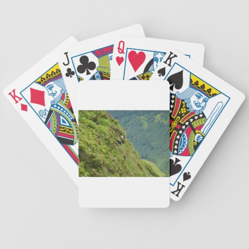 Goats on a very steep hillside bicycle poker cards