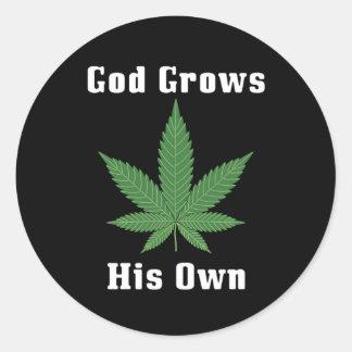 God Grows His Own Round Sticker
