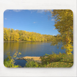 God's Golden Touch Mouse Pad