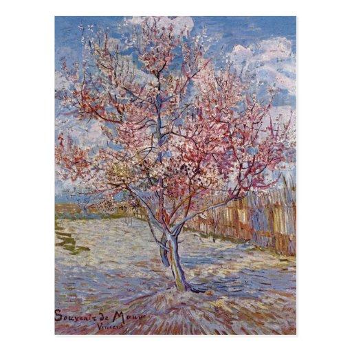 Gogh, Vincent van Souvenir de Mauve Reminiscence o Postcards