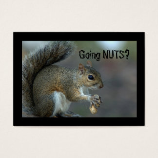 Going nuts business card