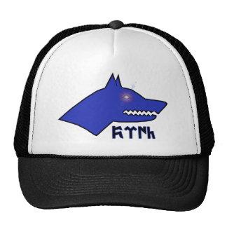 Gokturk Trucker Hat