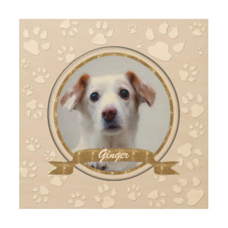 Gold and Sand Pet Memorial Wood Wall Art