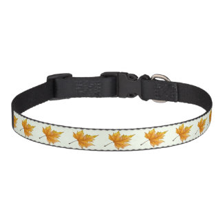 Gold and yellow maple leaf dog collar