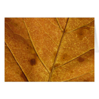 Gold Autumn Leaf | Blank Greeting Card