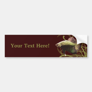Gold Betta Siamese Fighting Fish Bumper Sticker